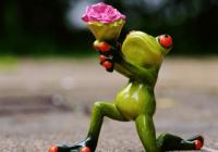 旅行青蛙取什么名字