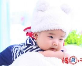 2015最新李姓男孩起名羊年
