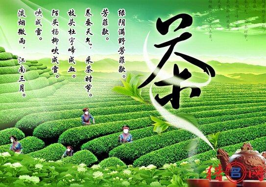 好听的茶叶公司钱柜qg777-茶叶公司取名-公司名称大全