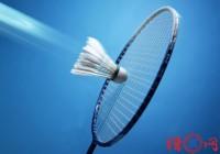 给羽毛球比赛取名-羽毛球比赛活动名字-名字大全