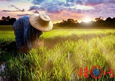 农业科技公司钱柜qg777大全