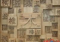 木制品公司钱柜qg777大全