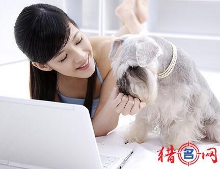 时尚的宠物用品店钱柜qg777大全