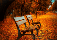 关于秋天的微信名字
