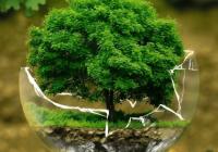 有创意的环保公司钱柜qg777