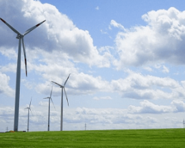 绿色生态农业公司起名