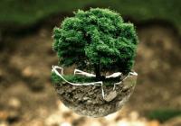 大气的园林绿化公司起名