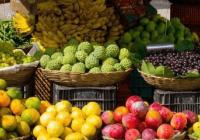 简单的水果店钱柜qg777