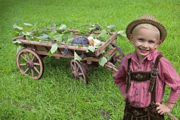 牛年男孩取名有水有草的名字